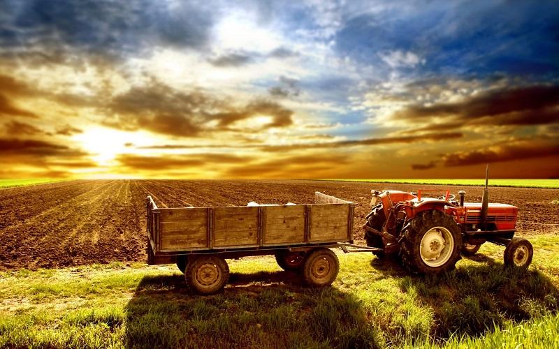 farm-scenery-06