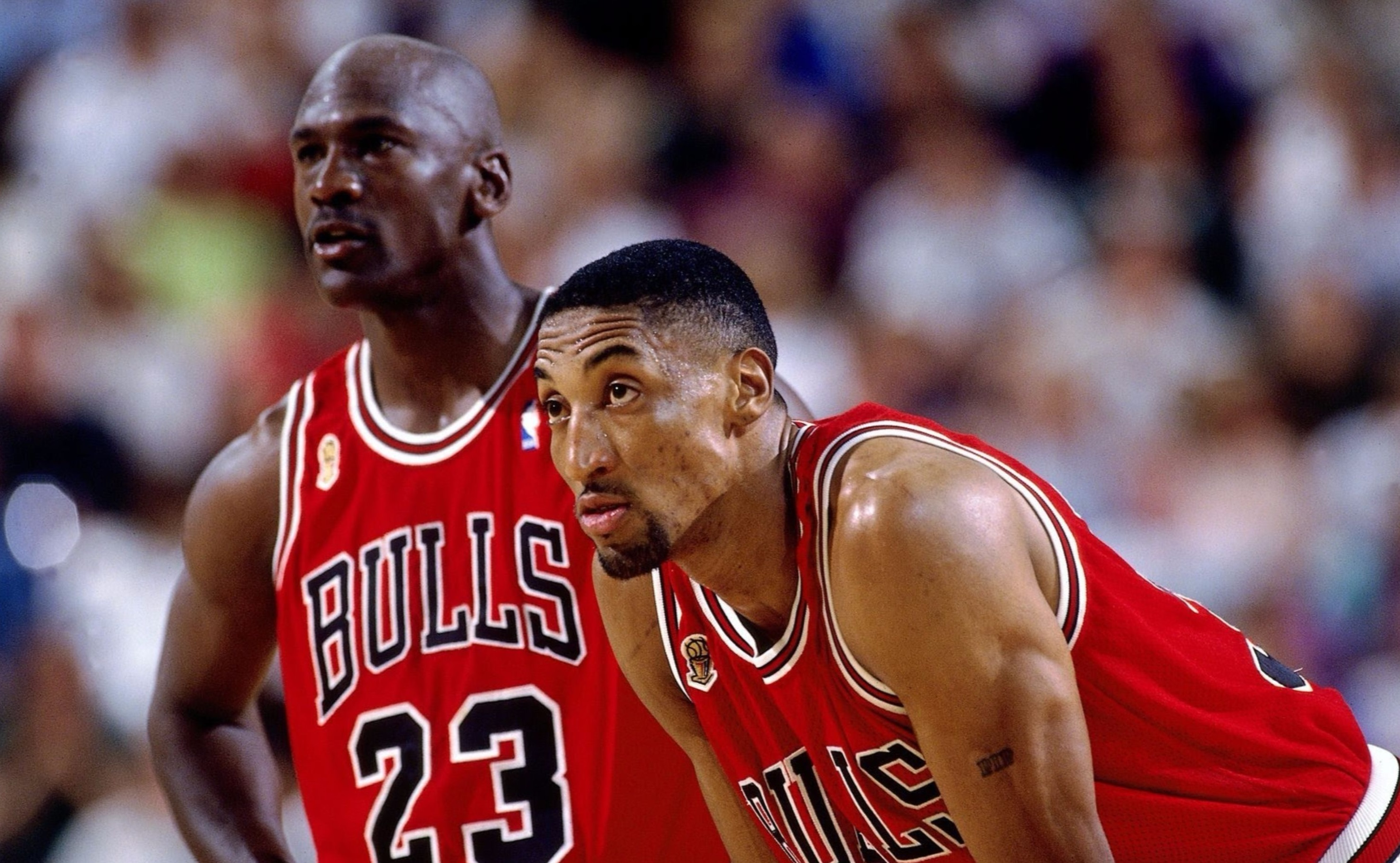 Scottie Pippen-young